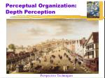 perceptual organization depth perception6