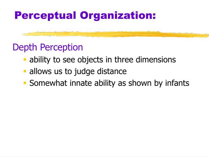 Perceptual Organization: