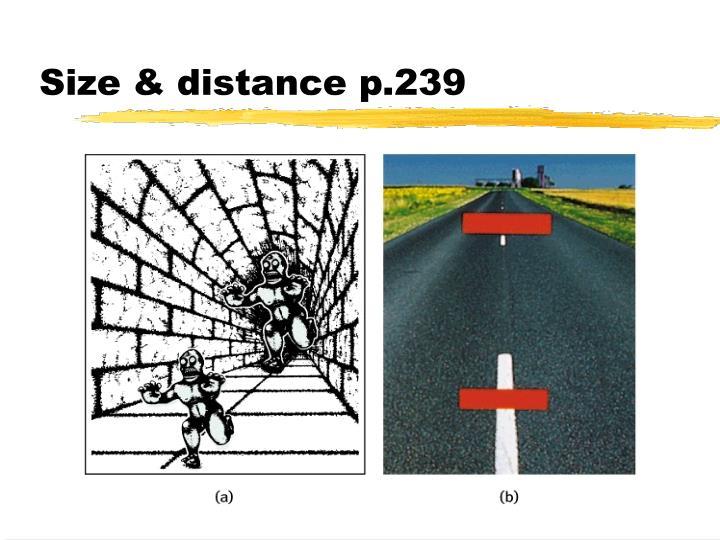 Size & distance p.239
