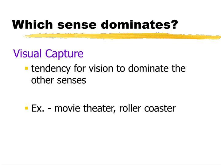 Which sense dominates?