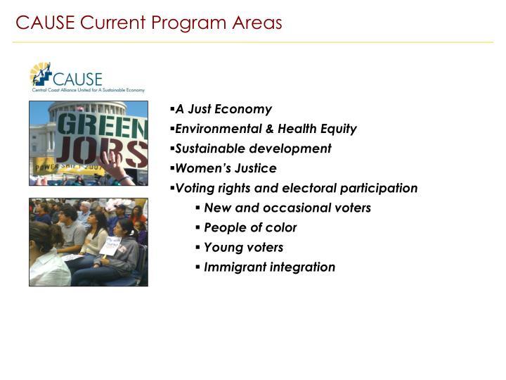 CAUSE Current Program Areas