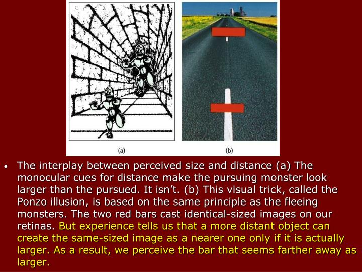 The interplay between perceived size and distance (a) The monocular cues for distance make the pursuing monster look larger than the pursued. It isn't. (b) This visual trick, called the Ponzo illusion, is based on the same principle as the fleeing monsters. The two red bars cast identical-sized images on our retinas.