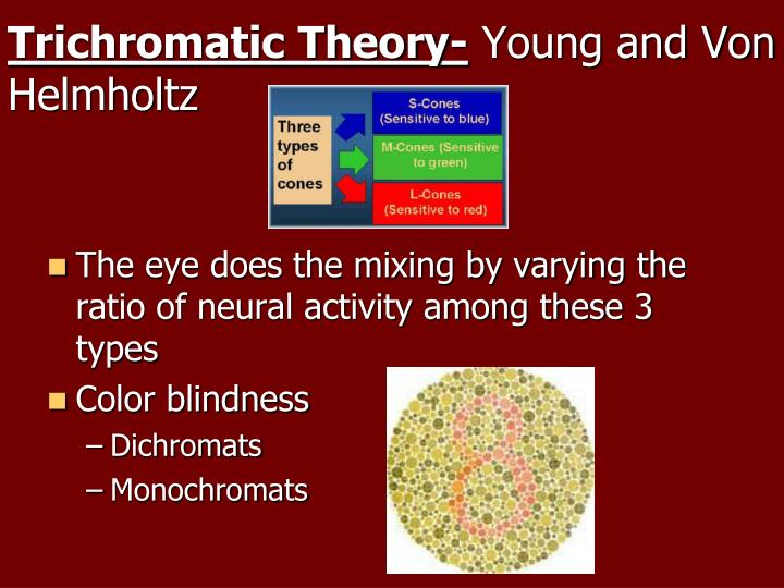 Trichromatic Theory-