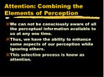 attention combining the elements of perception