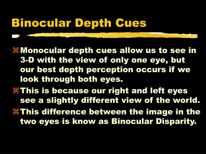 Binocular Depth Cues