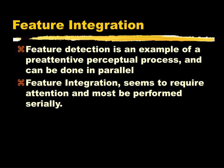 Feature Integration