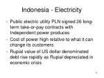 indonesia electricity