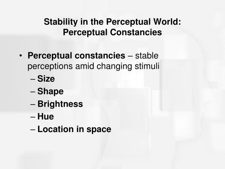 Stability in the Perceptual World: