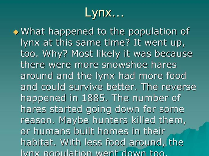 Lynx…