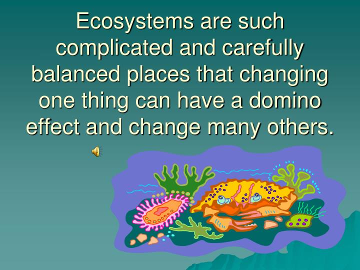 Ecosystems are such complicated and carefully balanced places that changing one thing can have a domino effect and change many others.
