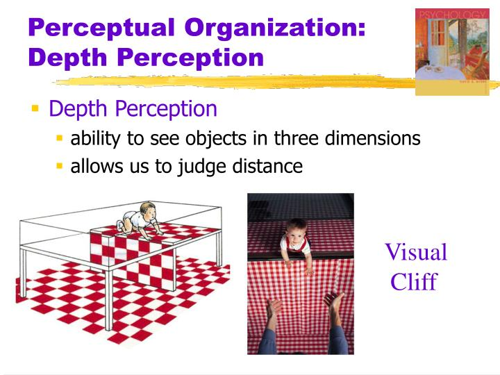 Perceptual organization depth perception