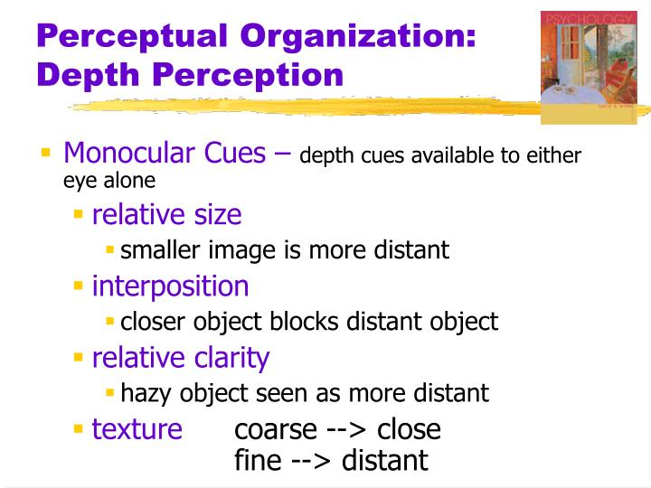 Perceptual organization depth perception1