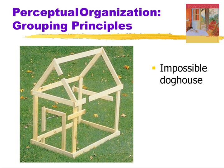 Perceptual	Organization: Grouping Principles