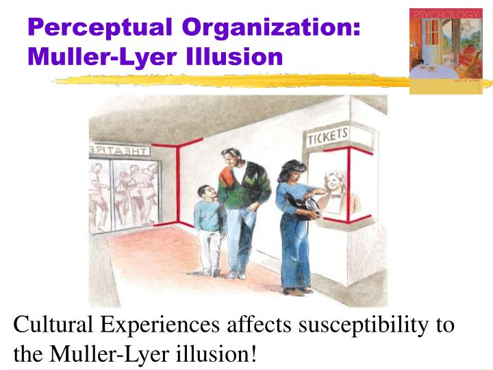 Perceptual Organization: Muller-Lyer Illusion
