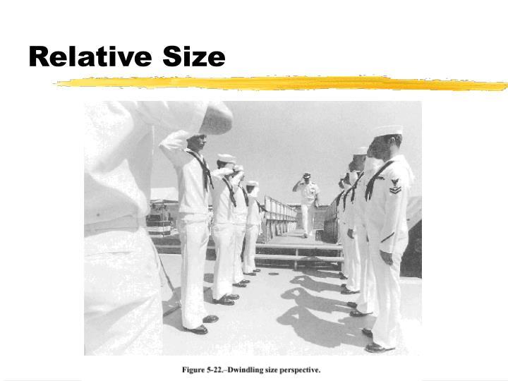 PPT - Perceptual Organization: Depth Perception PowerPoint ...  PPT - Perceptua...