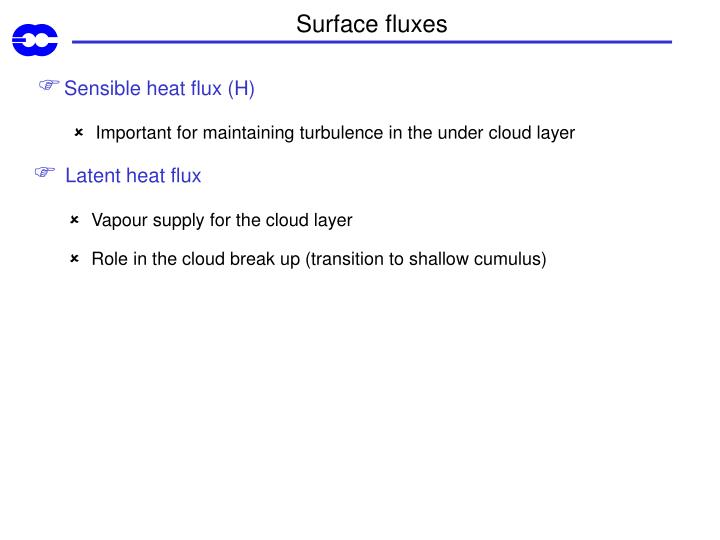 Surface fluxes