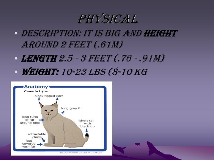 Physical