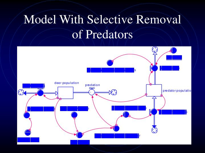 Model With Selective Removal of Predators