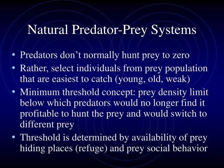 Natural Predator-Prey Systems