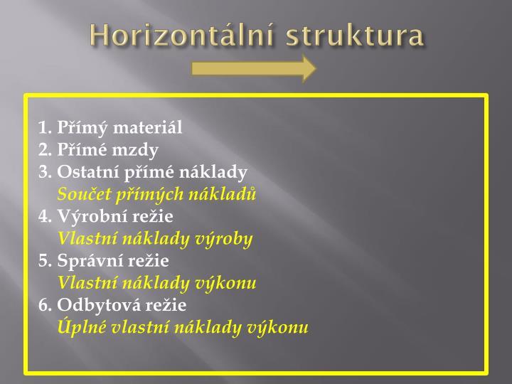 Horizontální struktura