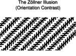 the z llner illusion orientation contrast