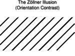 the z llner illusion orientation contrast1
