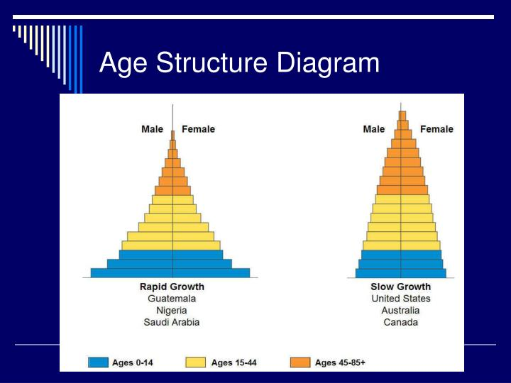 Age Structure Diagram