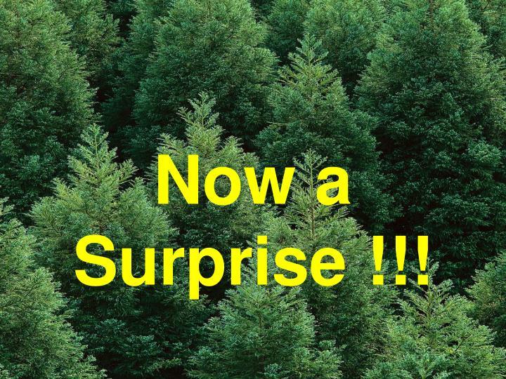 Now a Surprise !!!