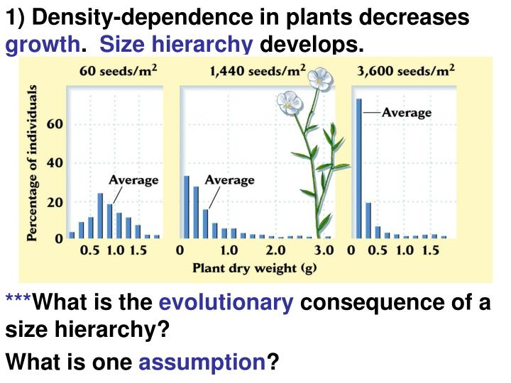 1) Density-dependence in plants decreases