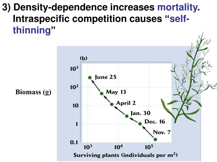 3) Density-dependence increases