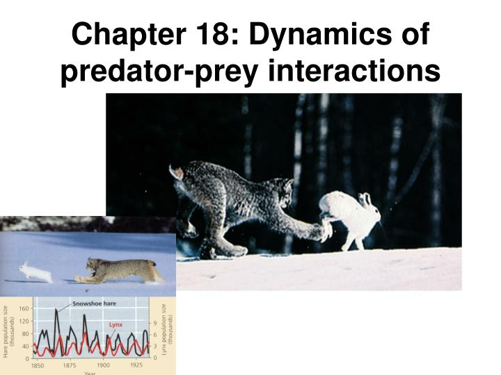 Chapter 18: Dynamics of