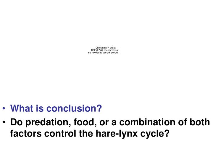 What is conclusion?
