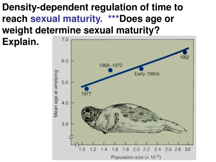 Density-dependent regulation of time to reach