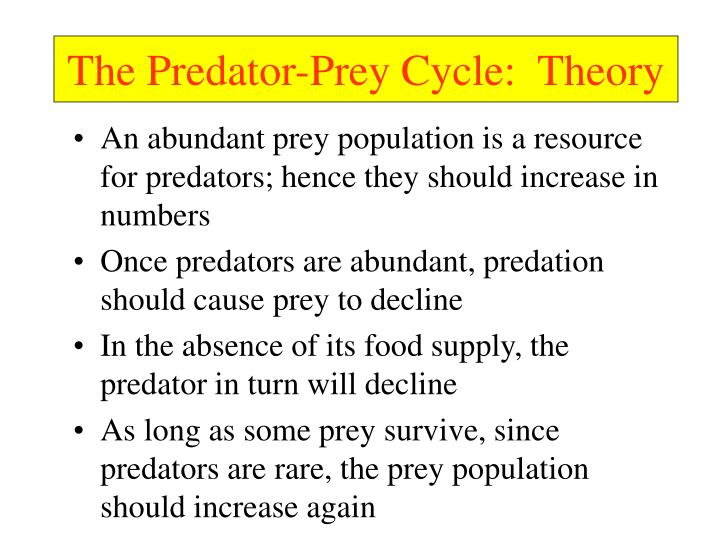 The Predator-Prey Cycle:  Theory