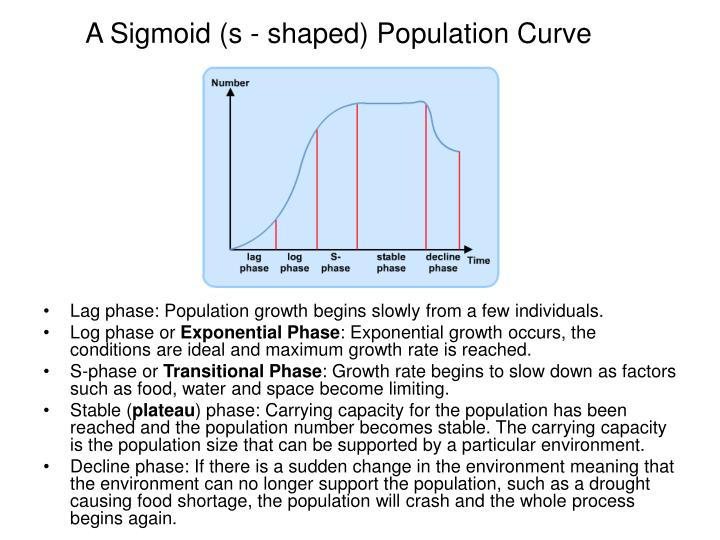 A Sigmoid (s - shaped) Population Curve
