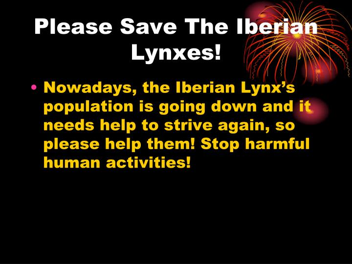 Please Save The Iberian Lynxes!