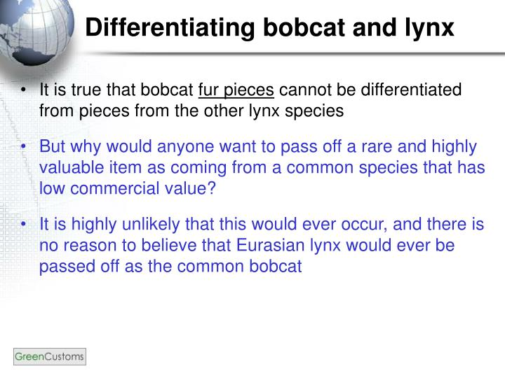 Differentiating bobcat and lynx
