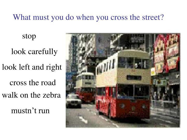 What must you do when you cross the street?