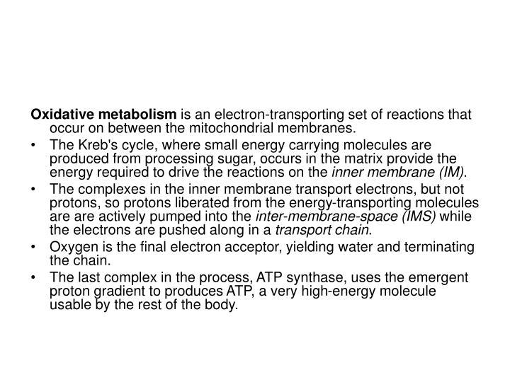 Oxidative metabolism