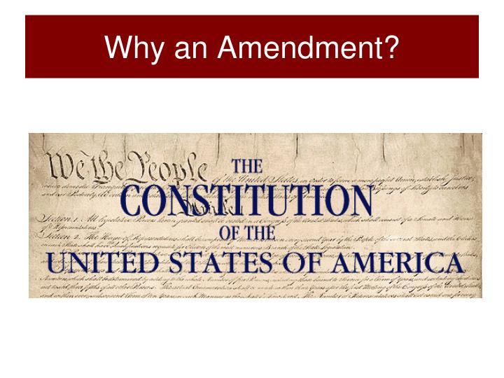 Why an Amendment?