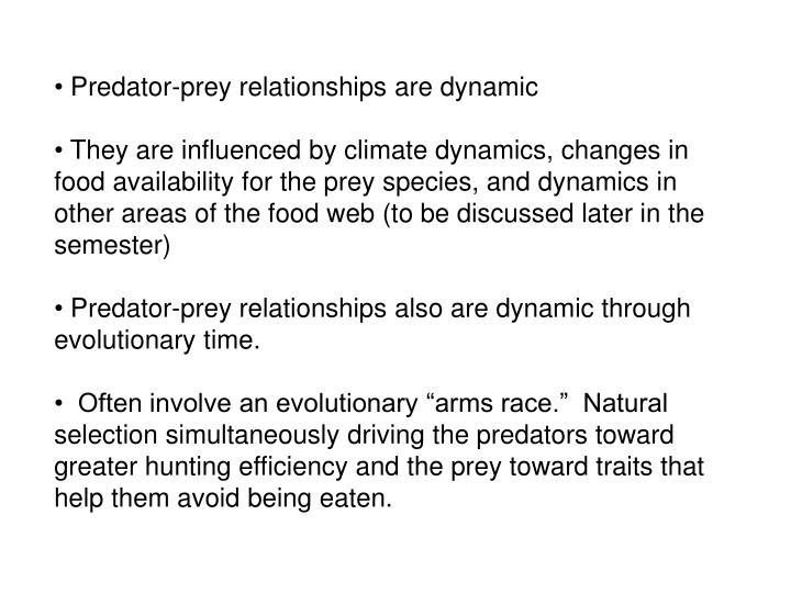 Predator-prey relationships are dynamic