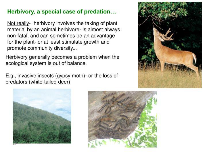 Herbivory, a special case of predation…