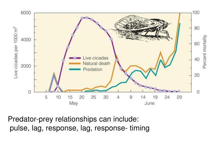 Predator-prey relationships can include: