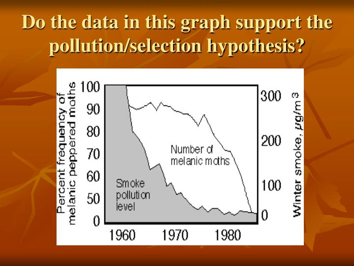 Do the data in this graph support the pollution/selection hypothesis?