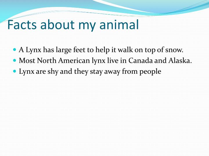 Facts about my animal