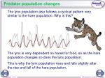 predator population changes