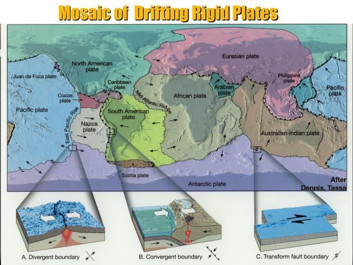 Mosaic of  Drifting Rigid Plates