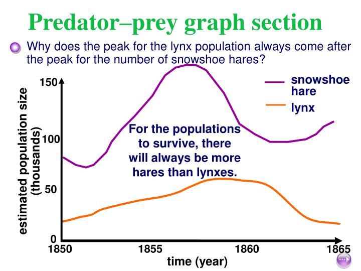 Predator–prey graph section