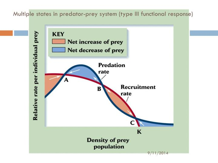 Multiple states in predator-prey system (type III functional response)