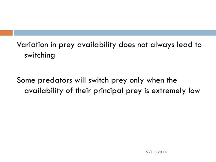Variation in prey availability does not always lead to switching